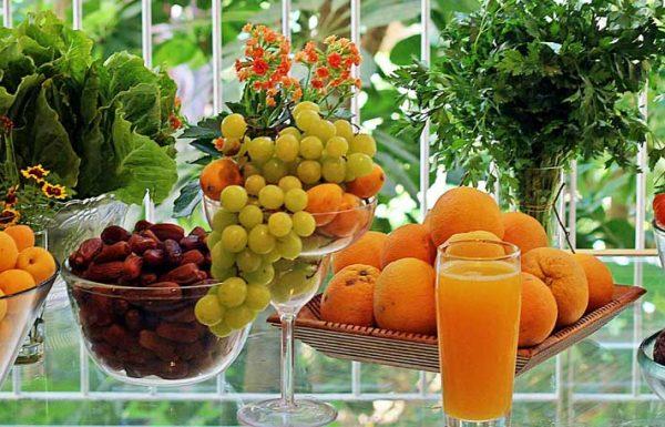 שלבי המעבר מתזונה רגילה לתזונה מושלמת