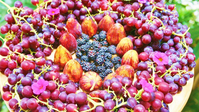 סיכום סדנה:  תזונת RawFood עשירה בפירות ודלה בשומן על קצה המזלג
